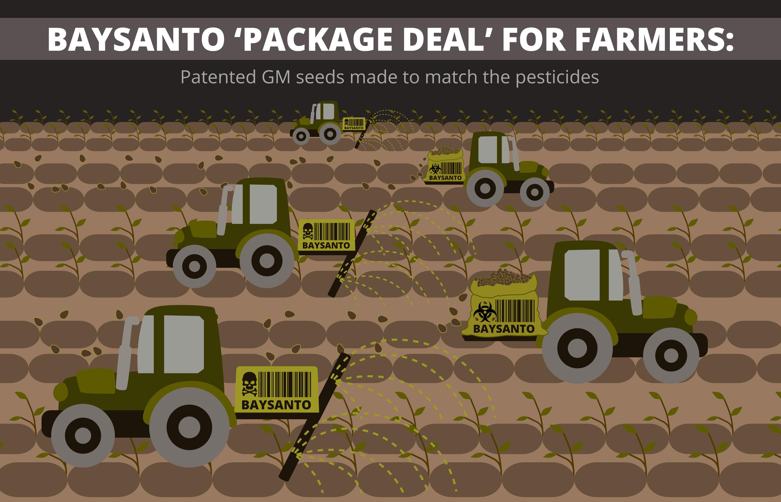 baysanto-infographics-05.png