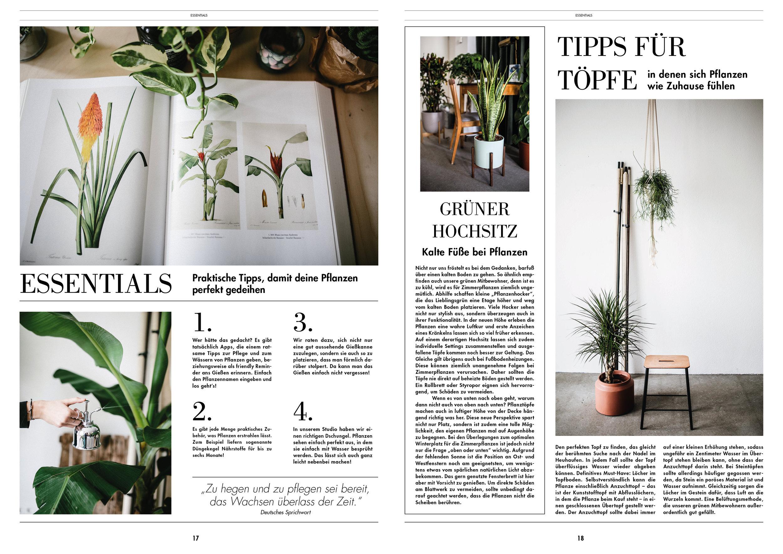 The Botanical Post10.jpg