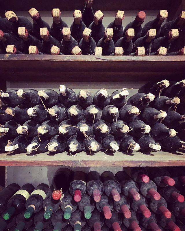 Exploring the #winecellar @fattorialavialla #tuscanwine #redwine #40yearsold #sangiovese #cabernet #vinsanto #grapes #harvest #vinorosso #wineyard #tuscany #dolcevita #bellaitalia #fattorialavialla #rushdarlington
