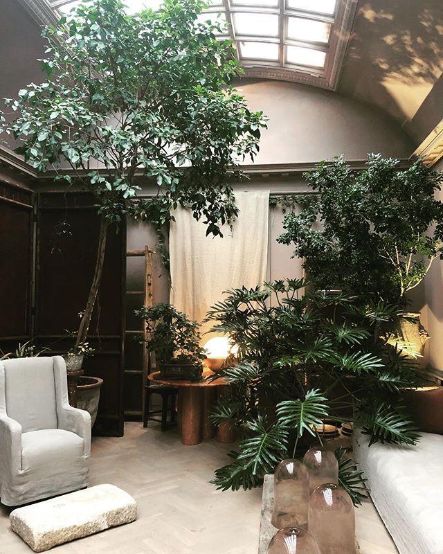 A must see in Copenhagen @studioolivergustav #interiordesign #studioolivergustav #copenhagen #designinspiration #plantstyle #botanicalgardens #thebotanicalpost #danishdesign #scandinaviandesign #global_creatives #travel #rushdarlington