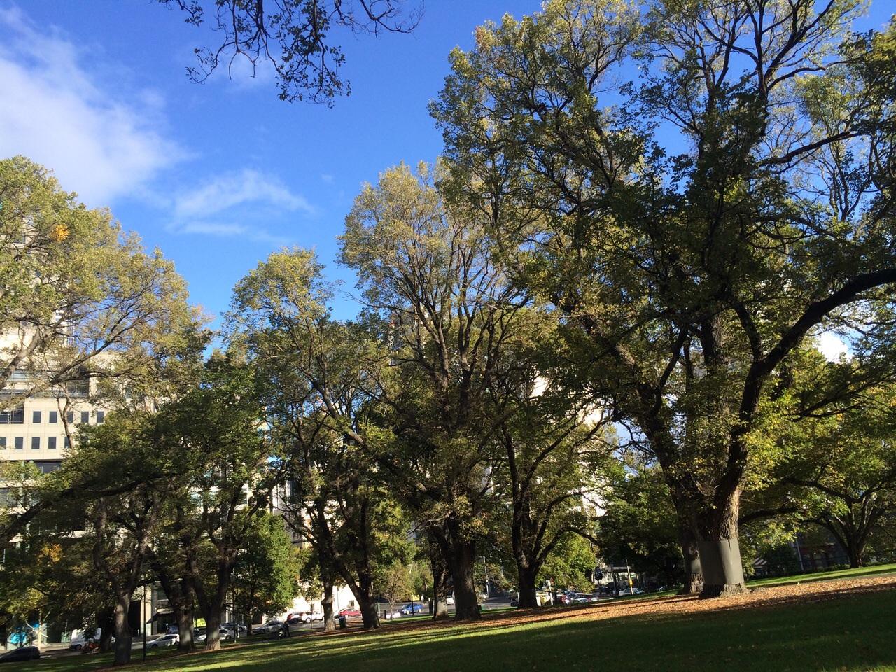 Flagstaff Garden Melbourne CBD