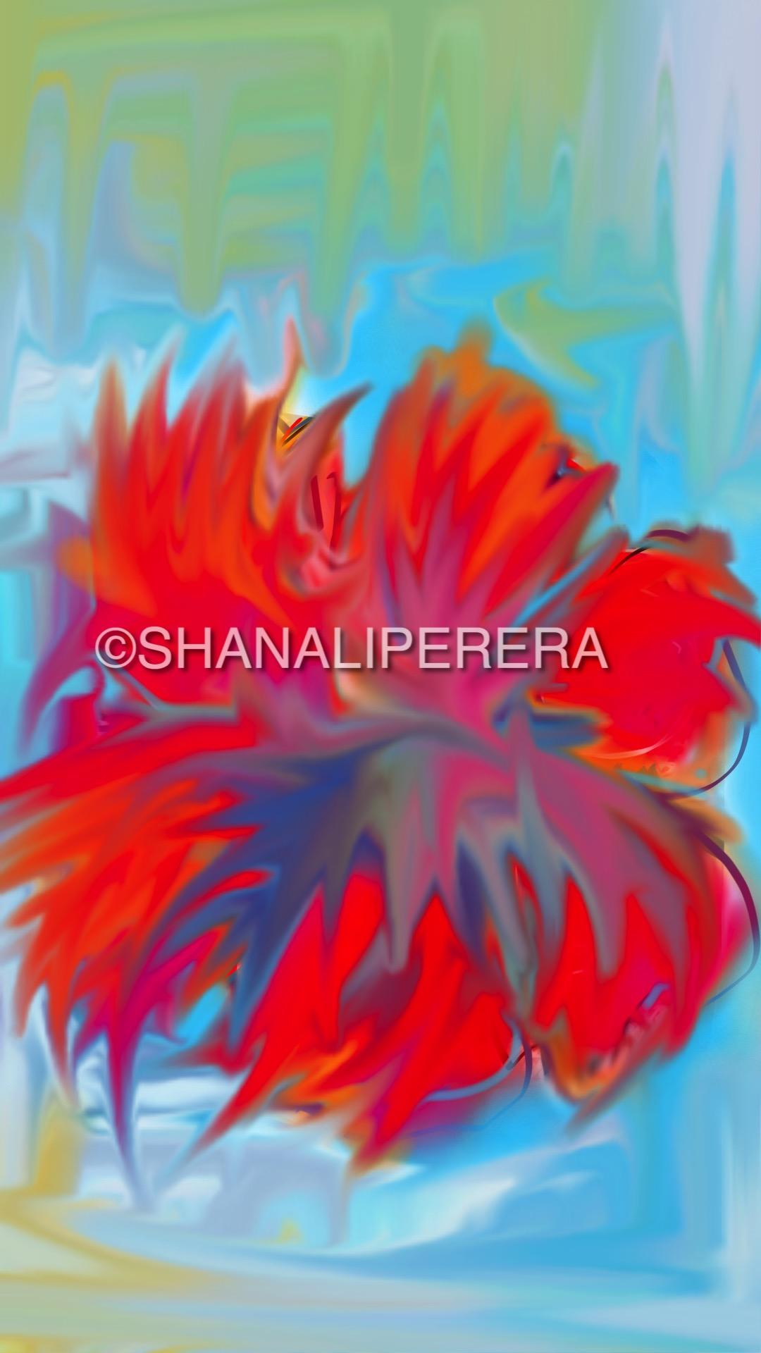 sketch-1504512543093.jpg