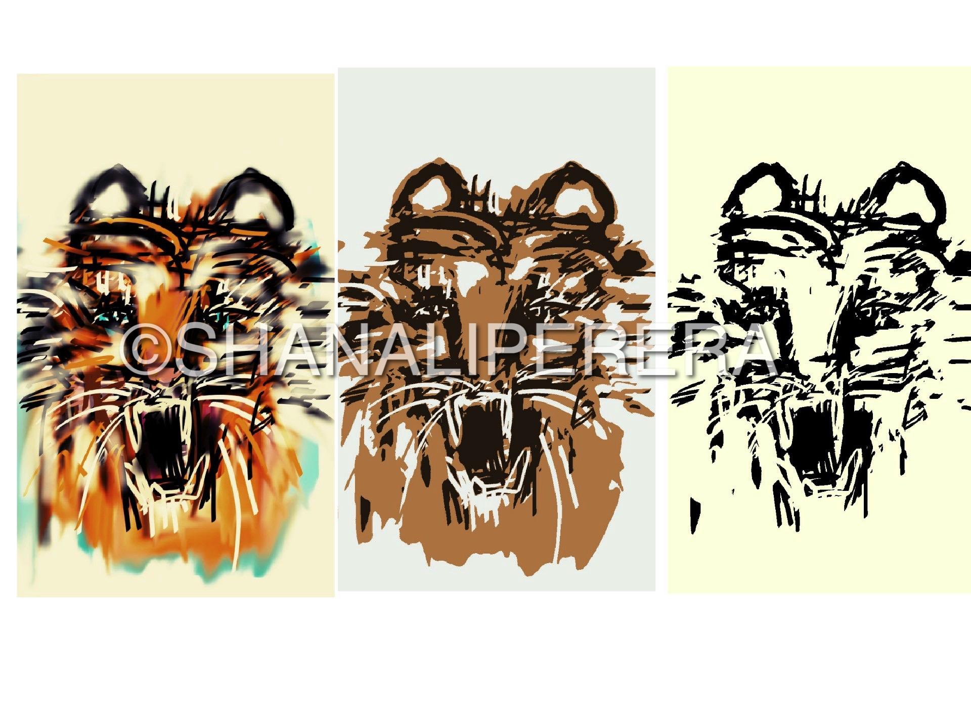 collage-1502818204602-1.jpg