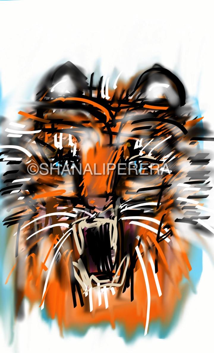 sketch-1502681021300.jpg