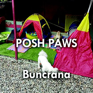Posh_Paws.jpg