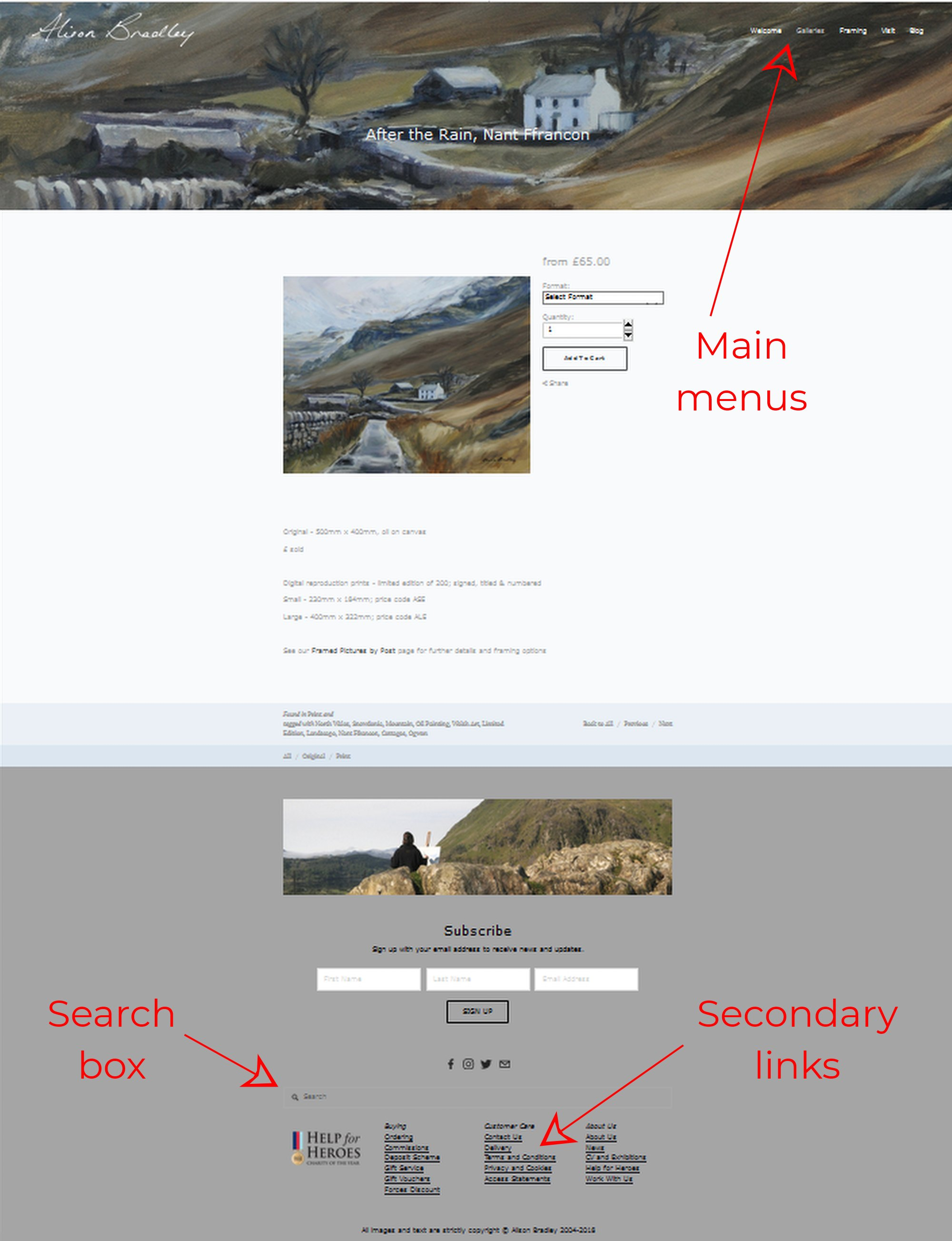 404-help-page-alison-bradley.jpg