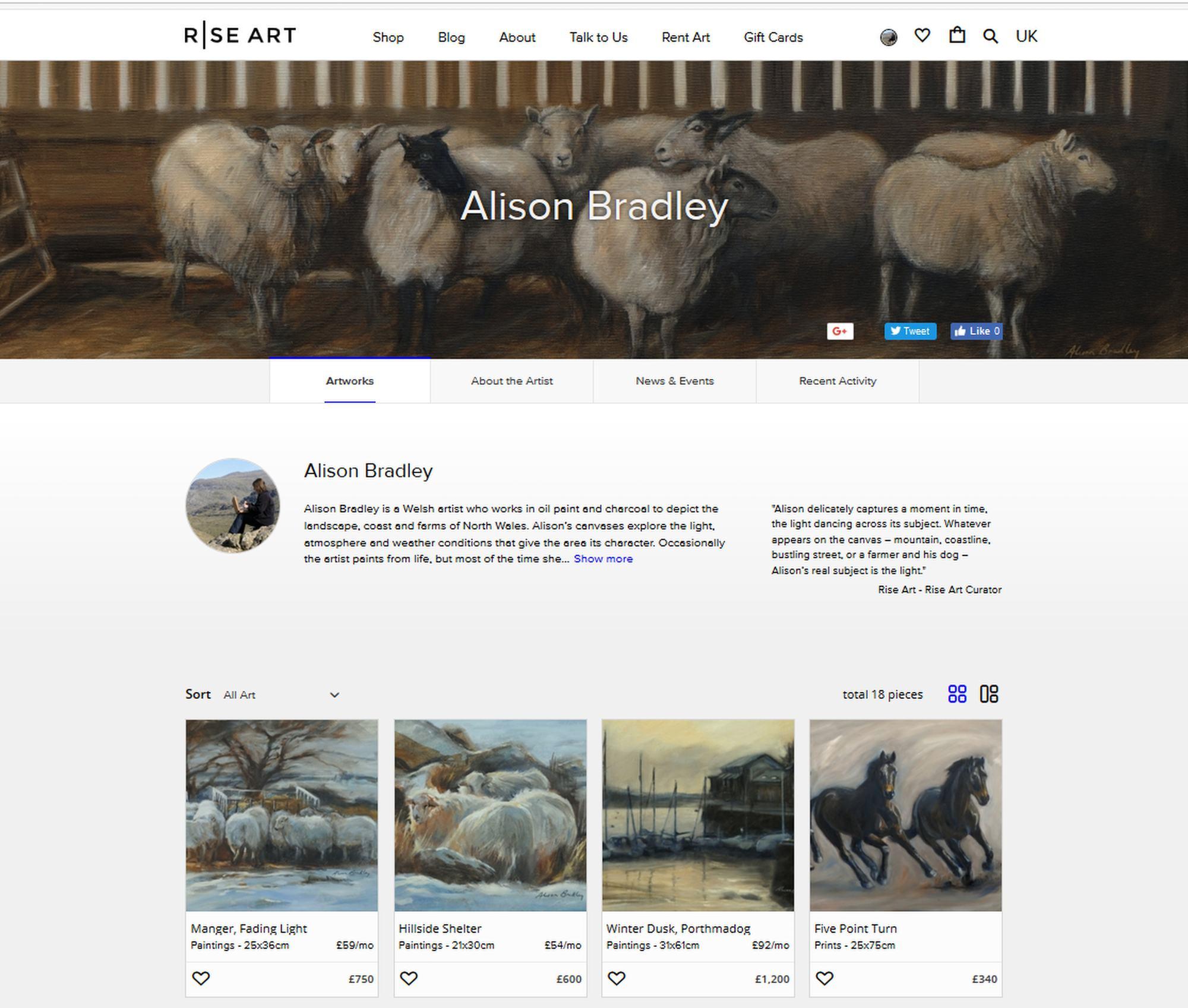 Rise Art - Alison's page