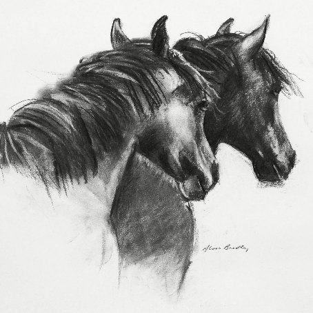 Equestrian & Racing