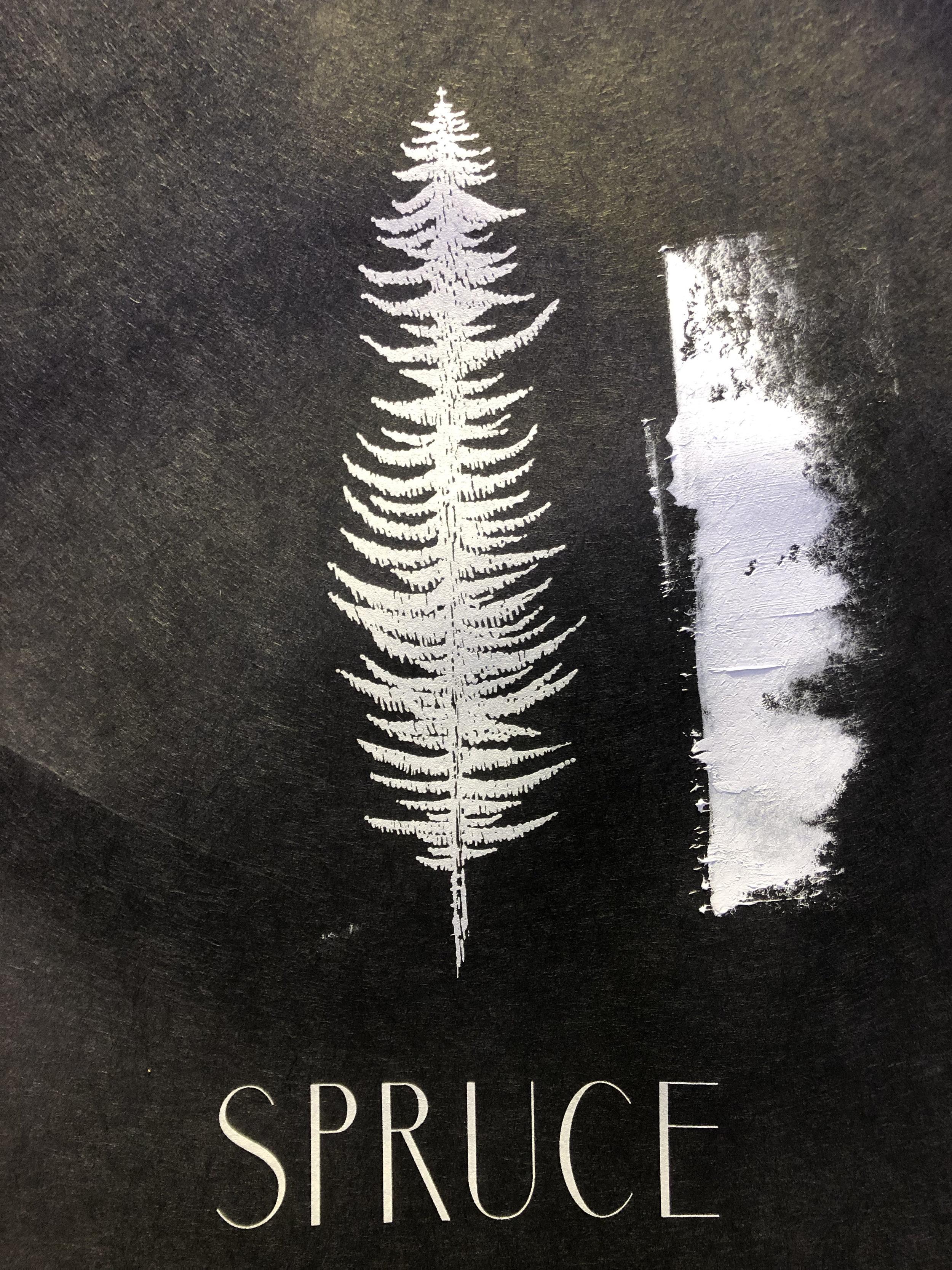 spruce1.jpg