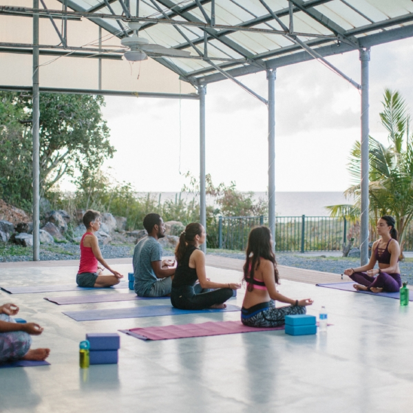 pineappleyogi-nyc-yoga-retreat-class-st-john