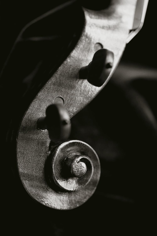 Clemens-Viola-scroll.jpg