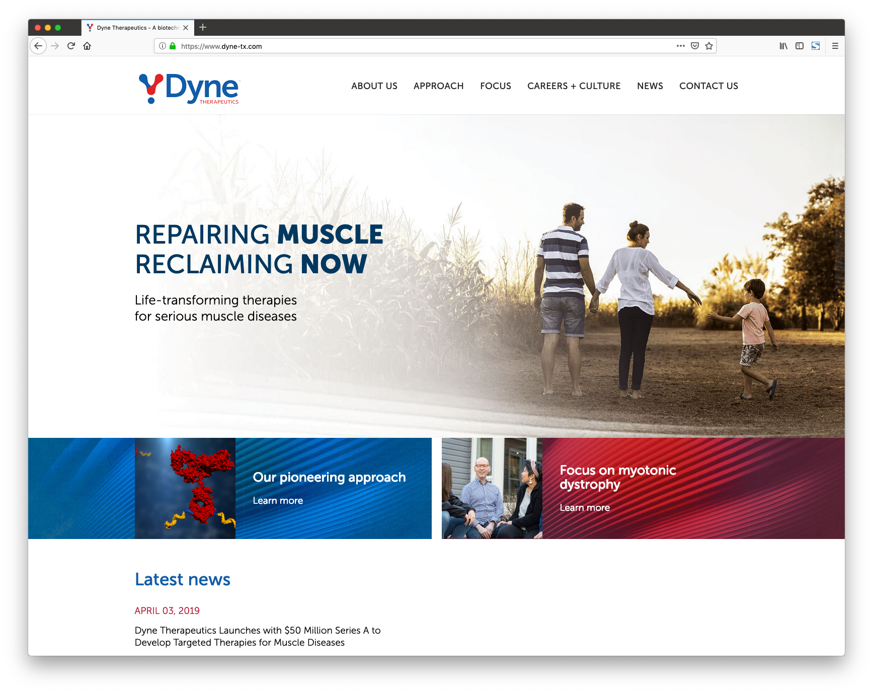 Dyne Therapeutics
