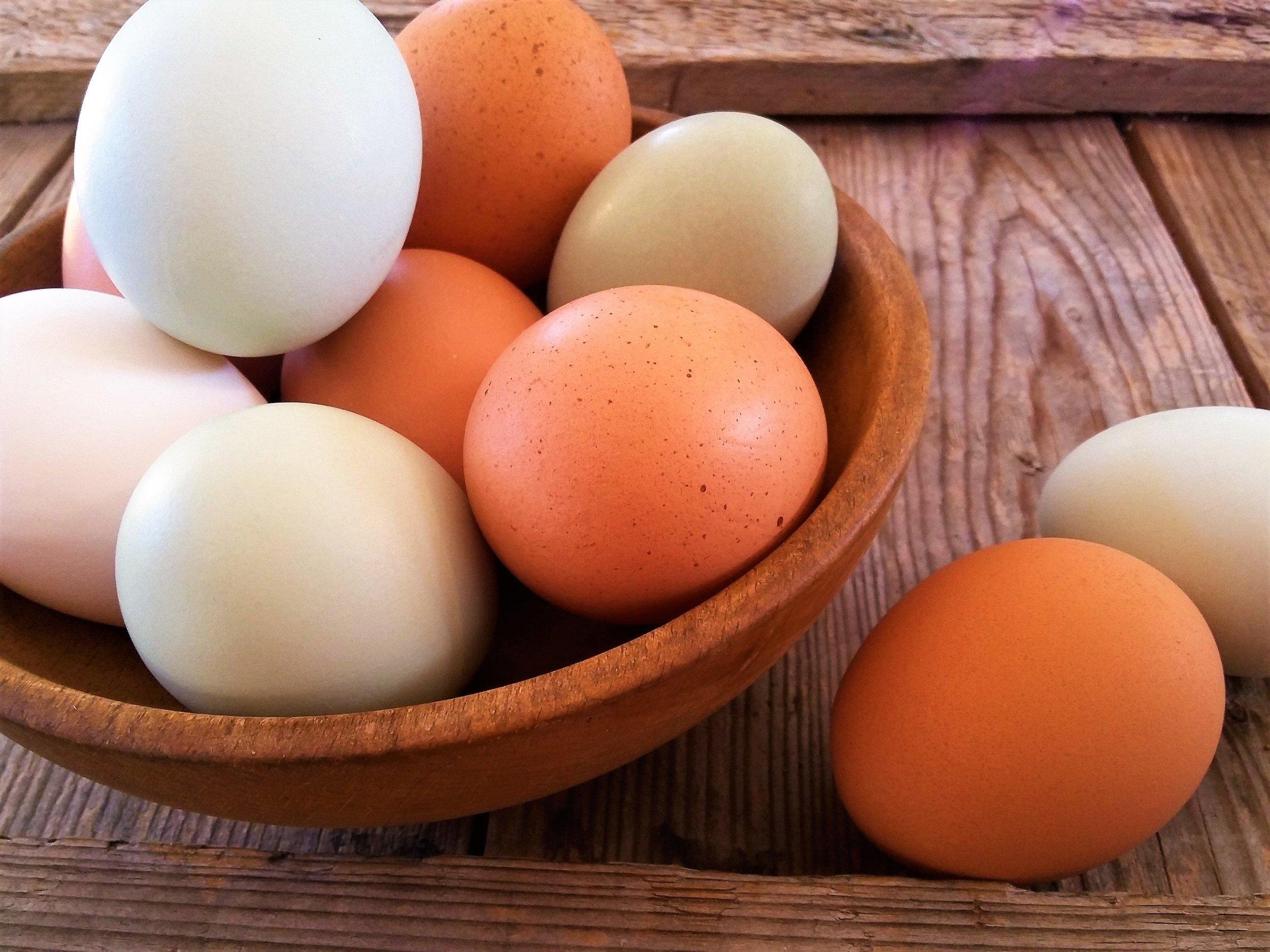 Non-disponibles - Oeufs provenant de poules heureuses