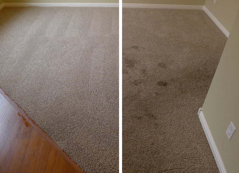 carpet before and after.jpg