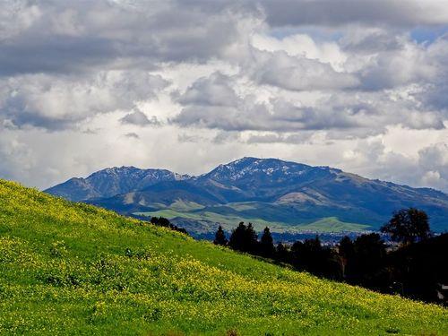 Mt. Diablo hillside.jpg