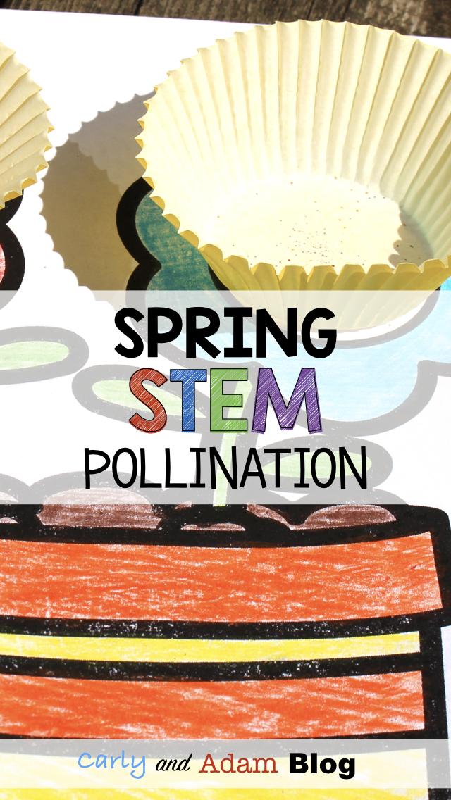 Spring STEM Blog Post IMAGES.003.jpeg