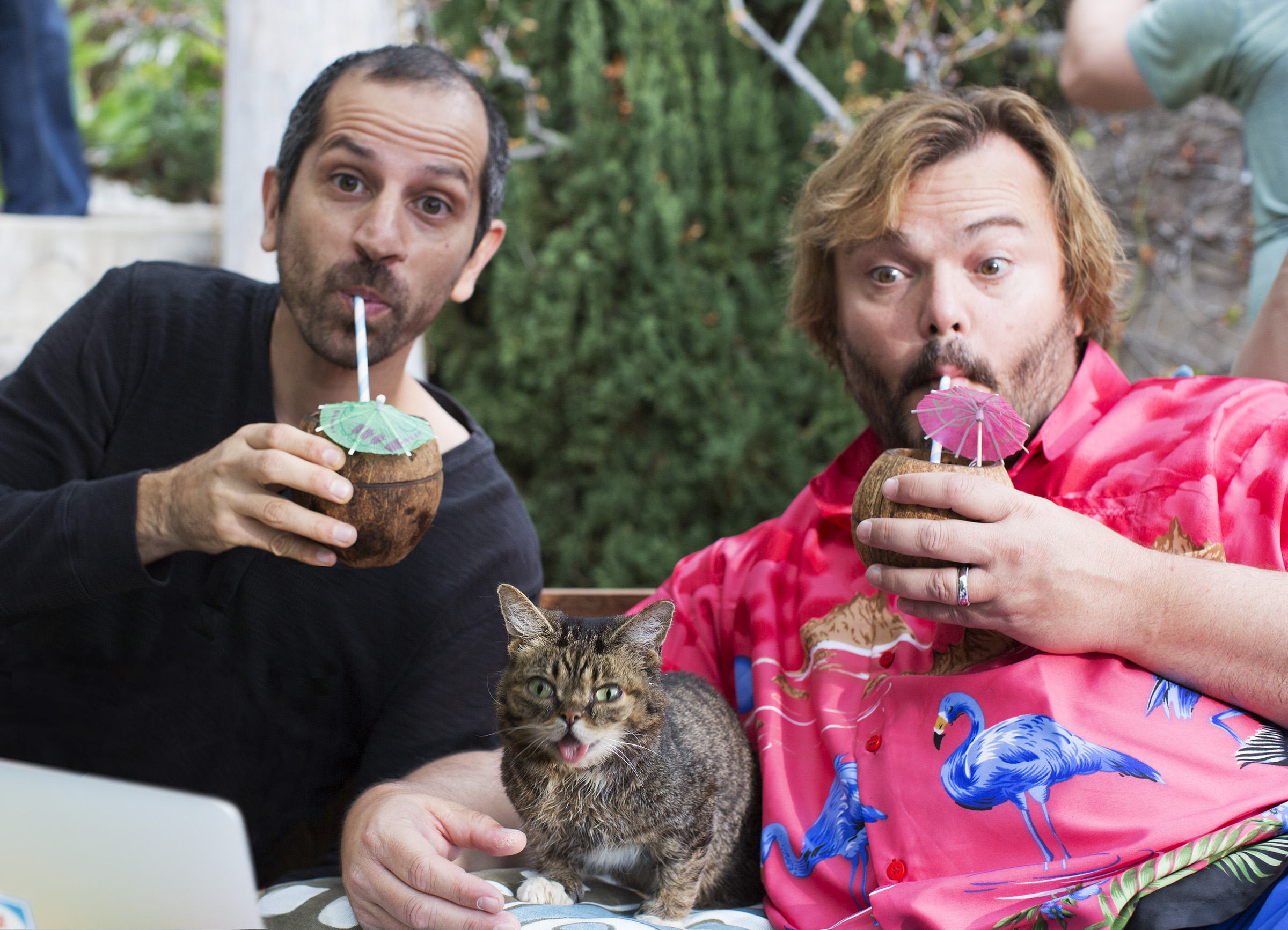 Writer/Director Nirvan on set of  COP22 Video  with Jack Black and Lil Bub.
