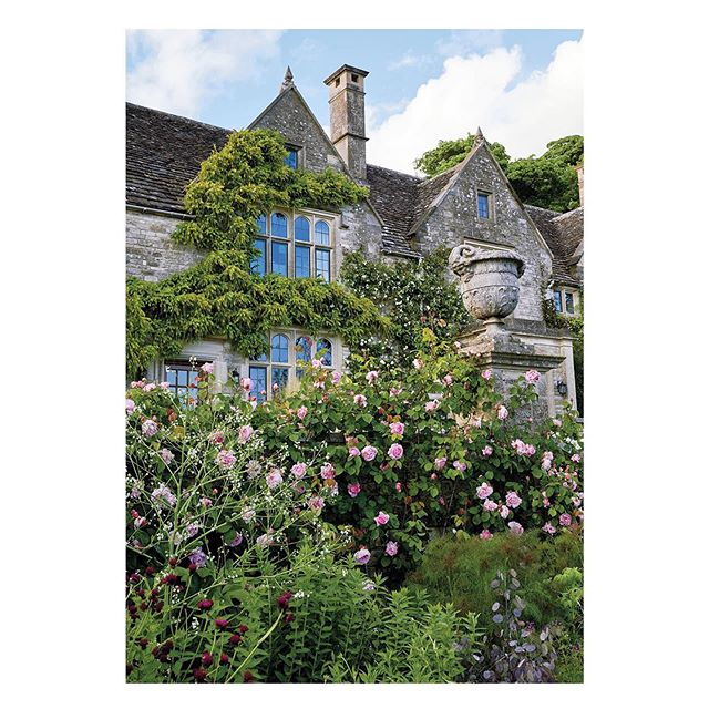 Research for a save-the-date: the gardens of Ian McEwan and Annalena McAfee in the English countryside. I love wild, untamed gardens so much and am in awe of people who design and maintain these little ecosystems. Photo by Ricardo Labougle via @tmagazine