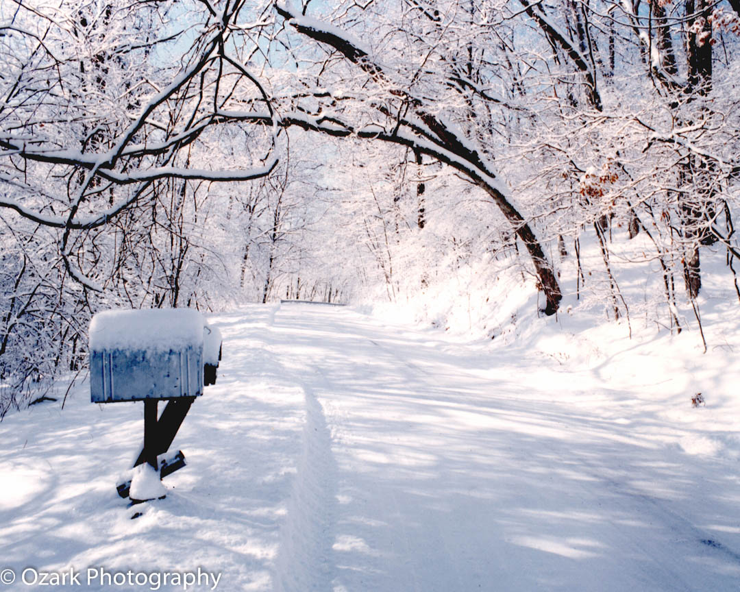 Winter in Elsa, IL.jpg