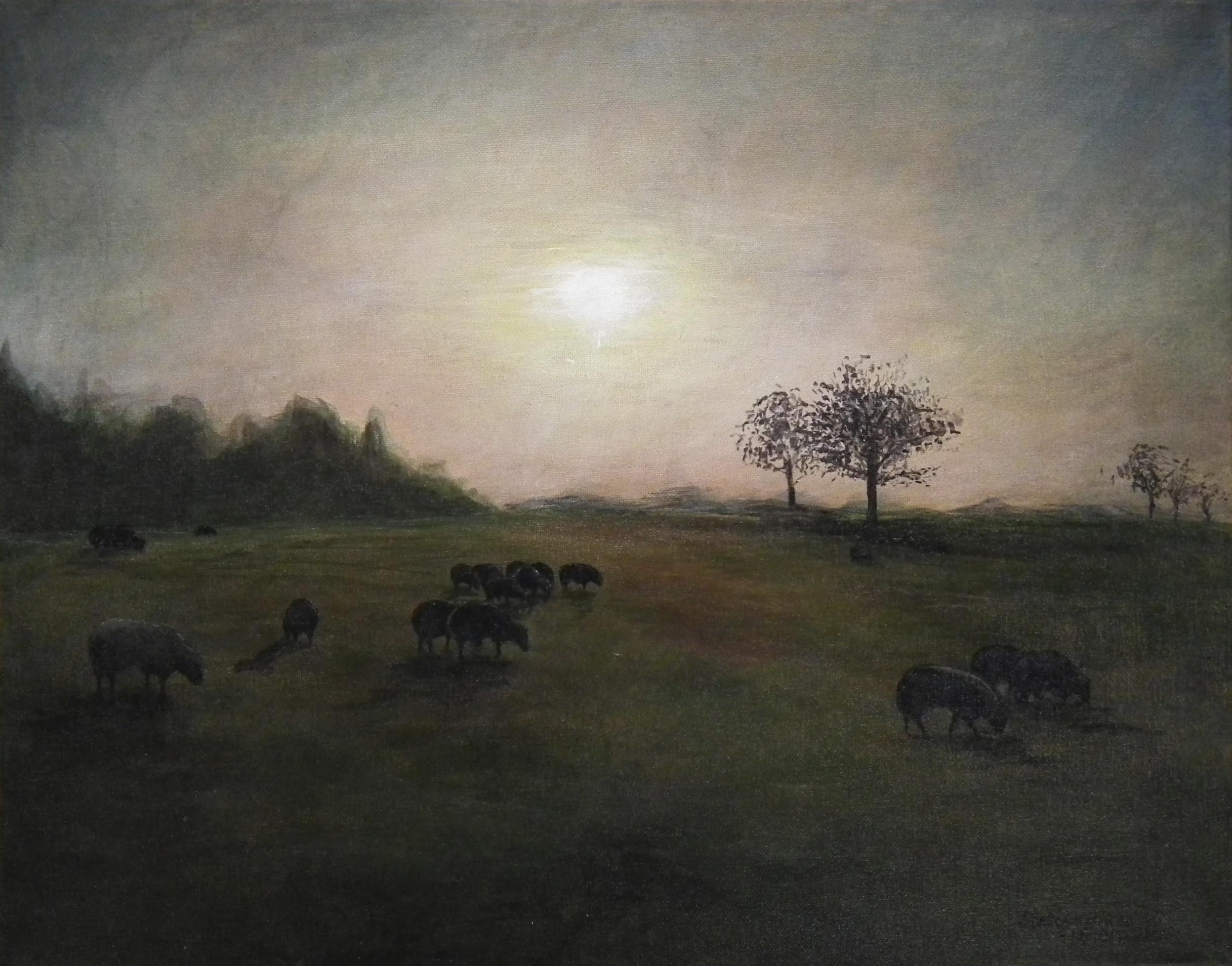2012_Sheep Field.JPG
