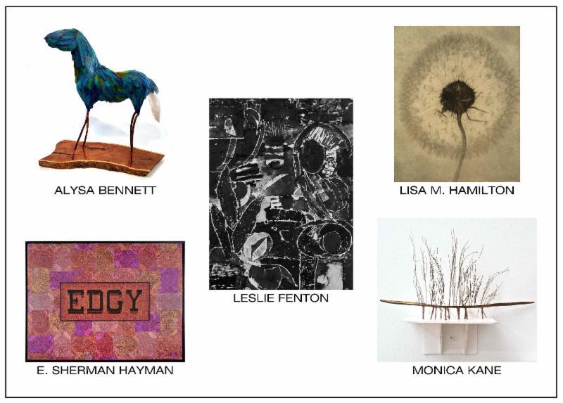 Featuring solo exhibitions by Alysa Bennett, Leslie Fenton, Lisa M. Hamilton, E. Sherman Hayman & Monica Kane        March 13 - April 7, 2019  Reception: Saturday, March 16, 2-5pm