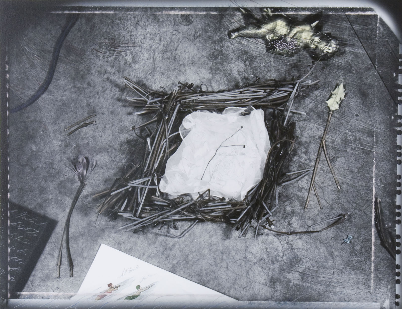 """Chart of Brief Forms #1/Nest"", 1989"