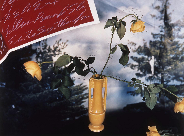 """Studio C Series/Yellow Roses with False Landscape"", 1985. 20x24"""