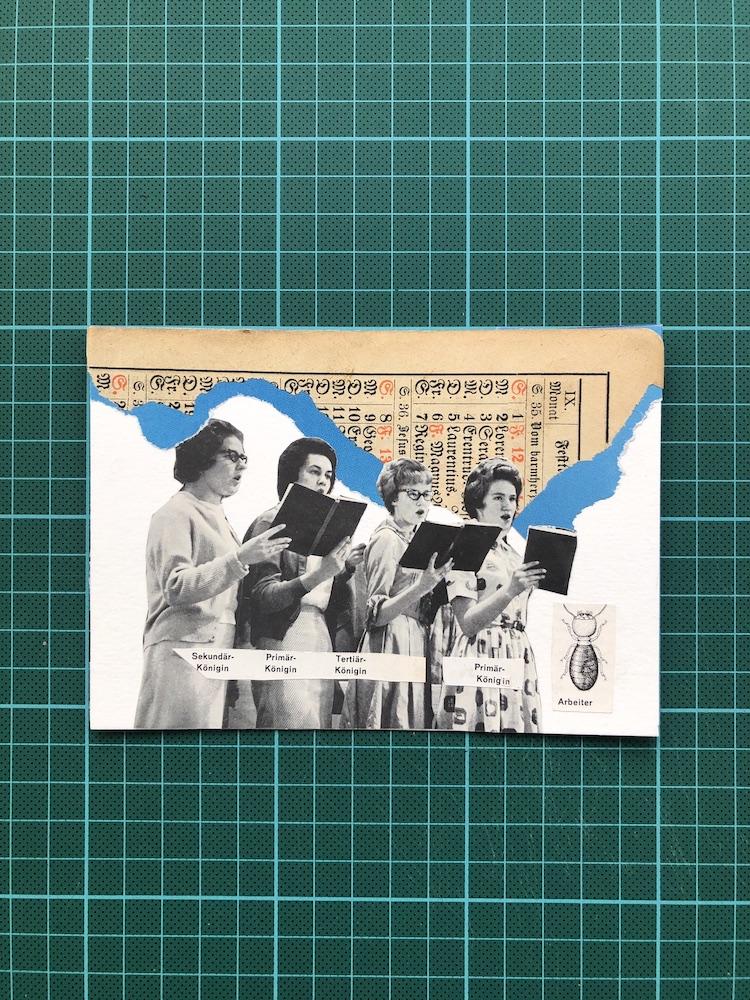 2 - Collage 10x15.JPG