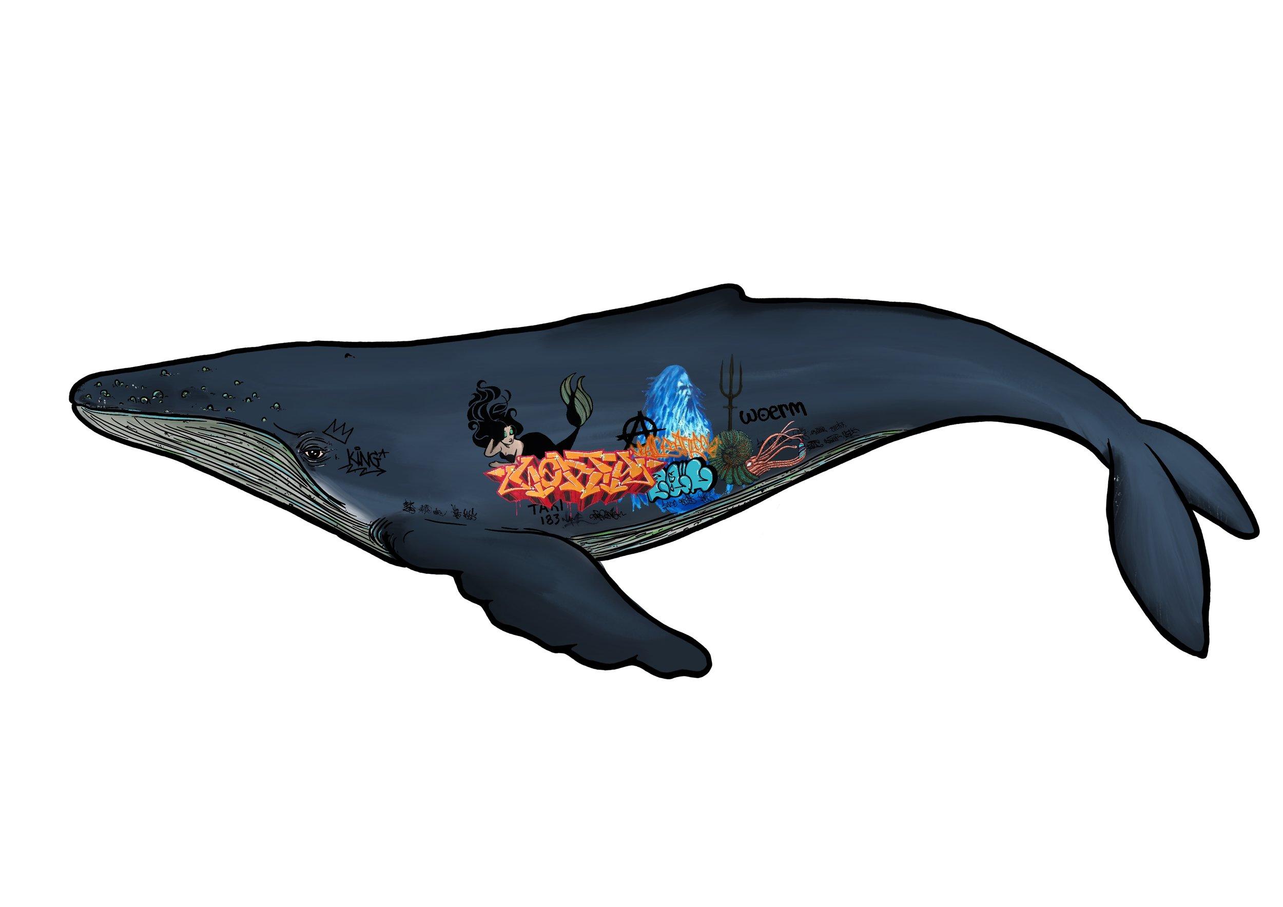 Graffiti Whale 2.jpg
