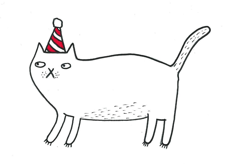 birthday cat 2.jpeg