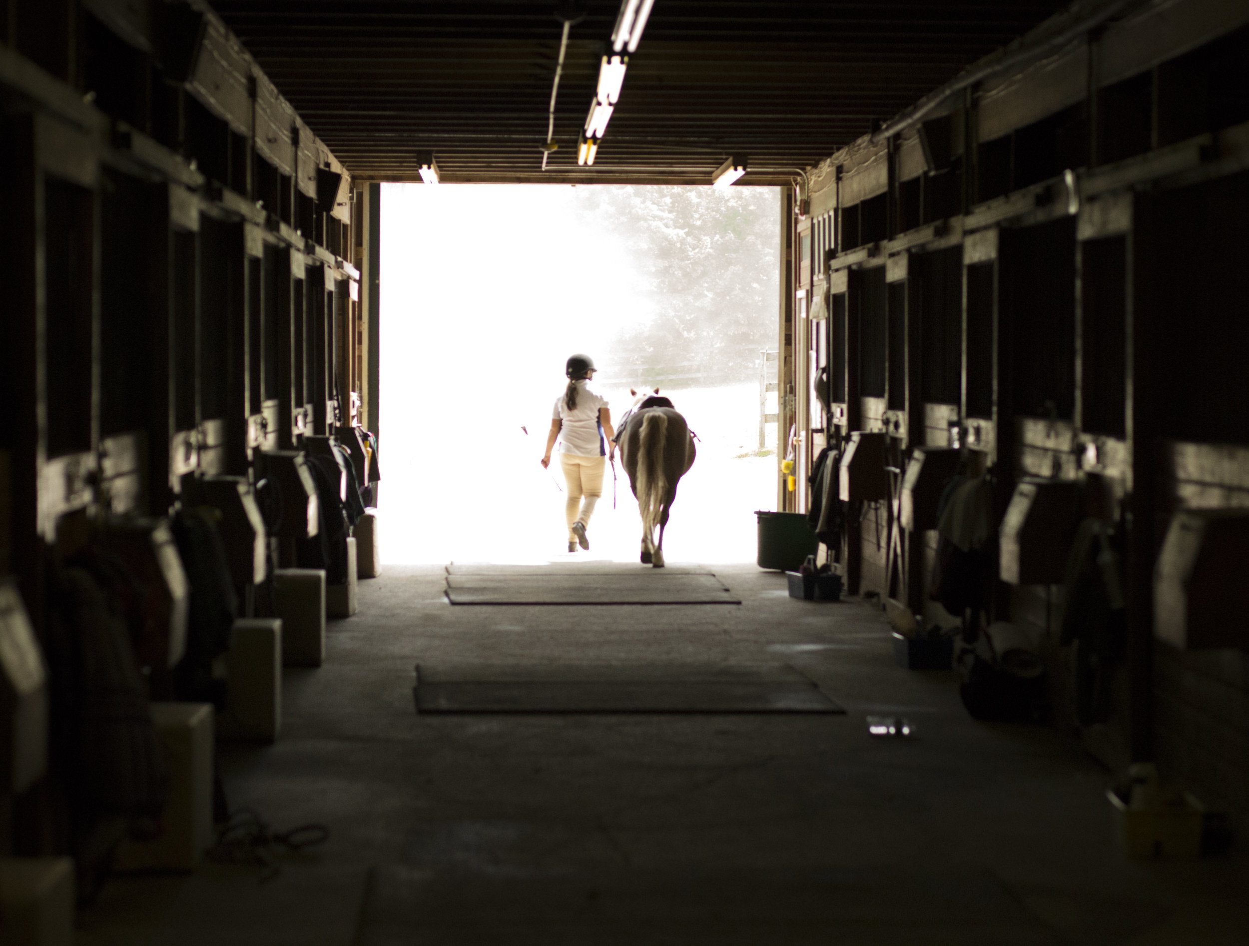 Post Horse Show060416_13.jpg
