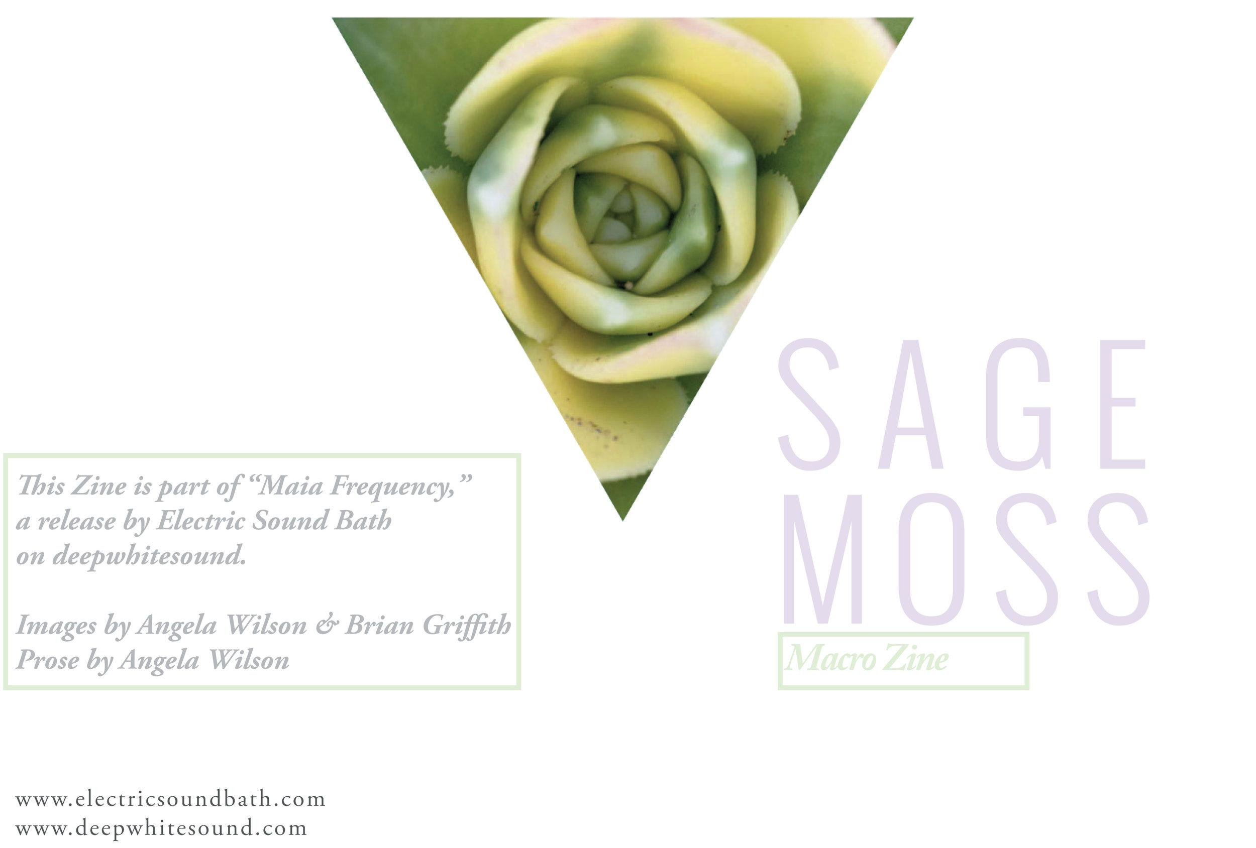 Sage-Moss-Macro-Photography-Zine-15.jpg