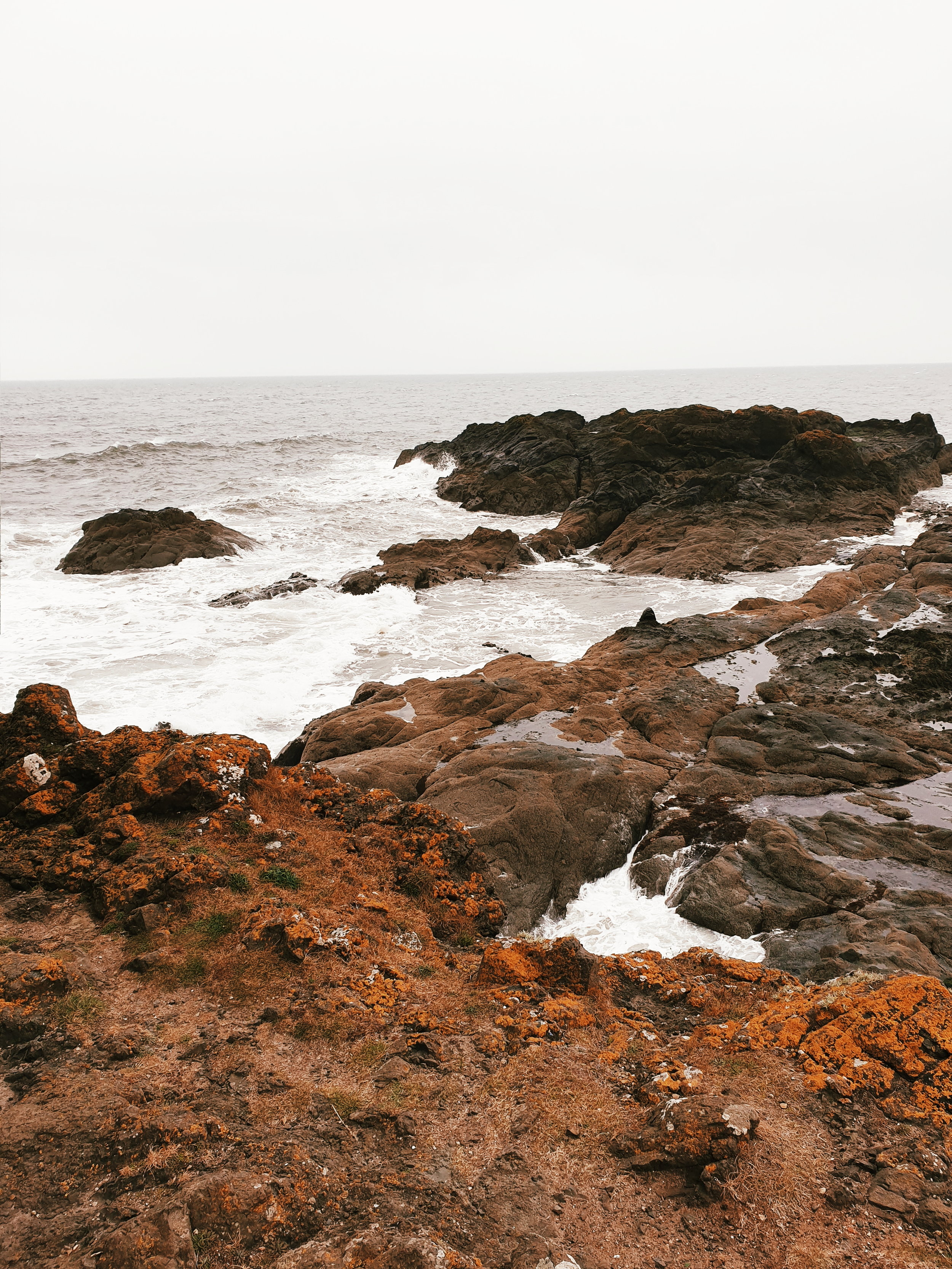 There is also the option of further exploring the coast on the Elie Chain Walk
