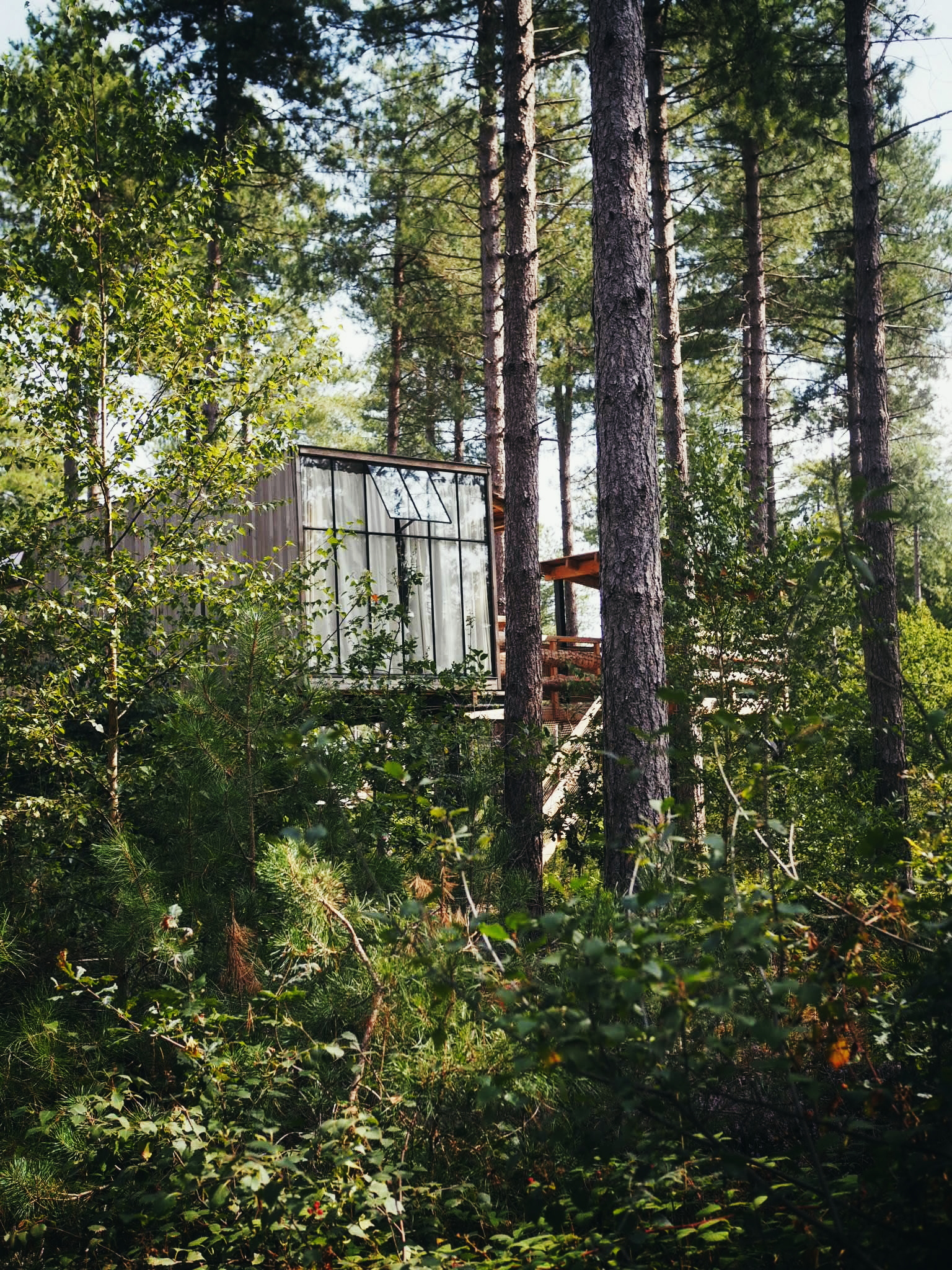 This is the cabin in the trees that we have our eye on for next time!