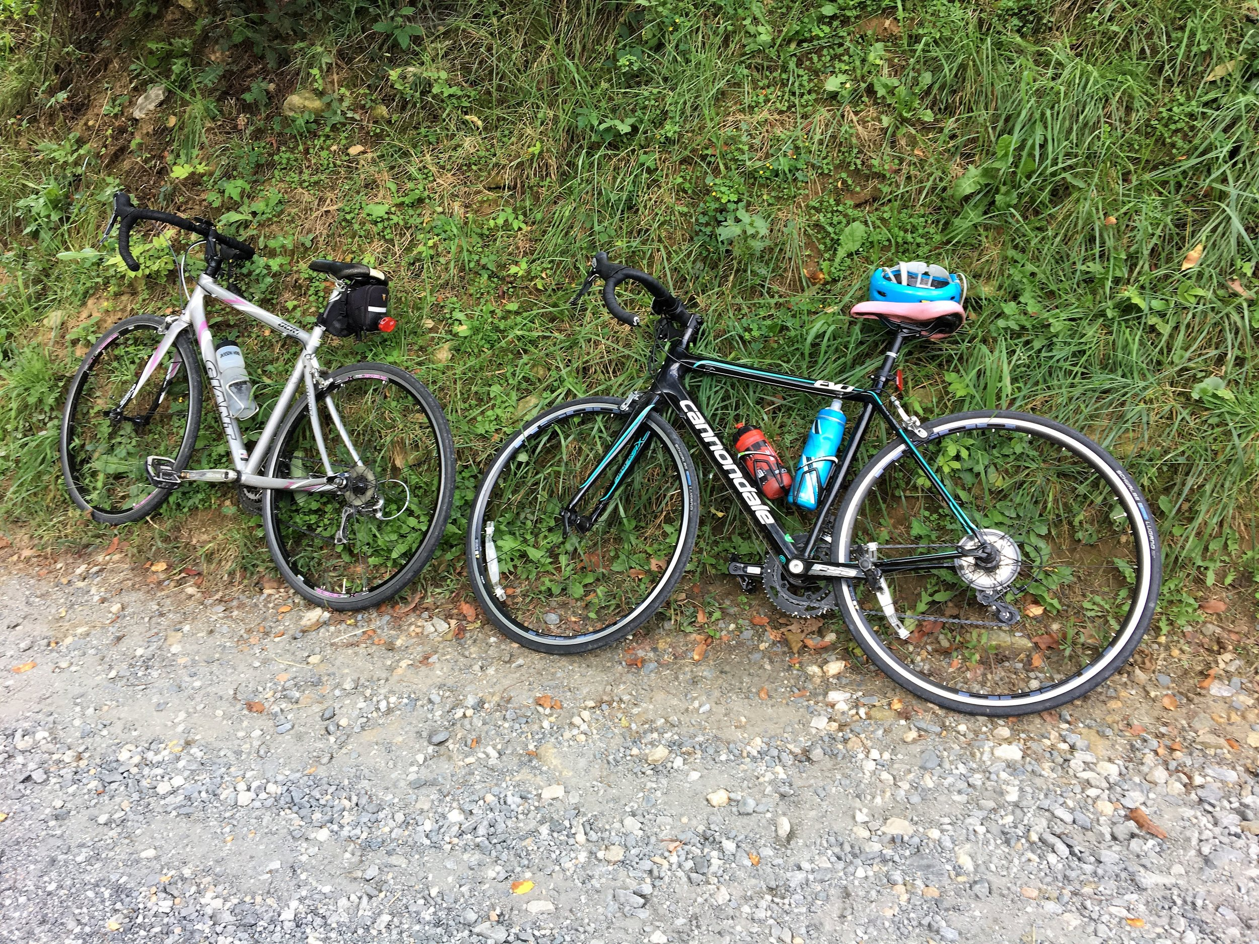 """- It takes just the right kind of person to enjoy spending an entire Sunday riding up and down steep mountain inclines with bicycle pedal power in order to see small farms in action. I guess I fall into that """"right person"""" category because I had a ridiculously good time at Pedal to Plate in Madison County."""