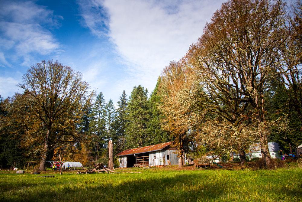 Copy of Swallowtail Farm Campus