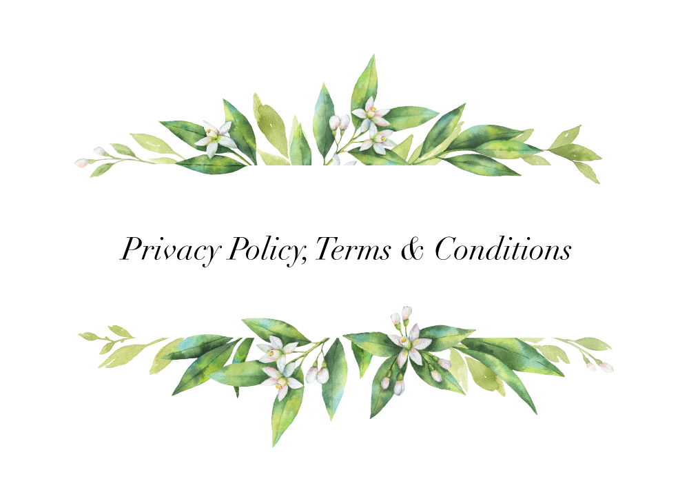 Privacy-Terms-Conditions.png