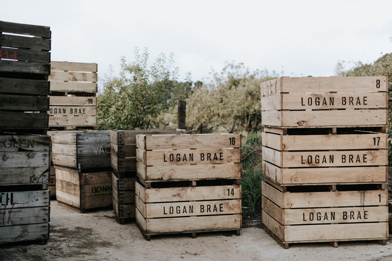 Logan-Brae-04.jpg