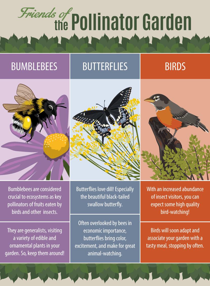 friends-of-pollinator-garden.png