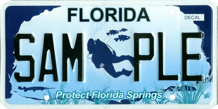 Protect Florida Springs specialty plate.