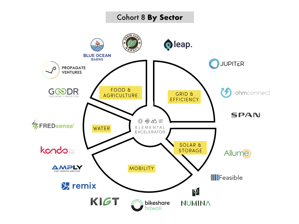 Cohort-8-by-sector.jpg