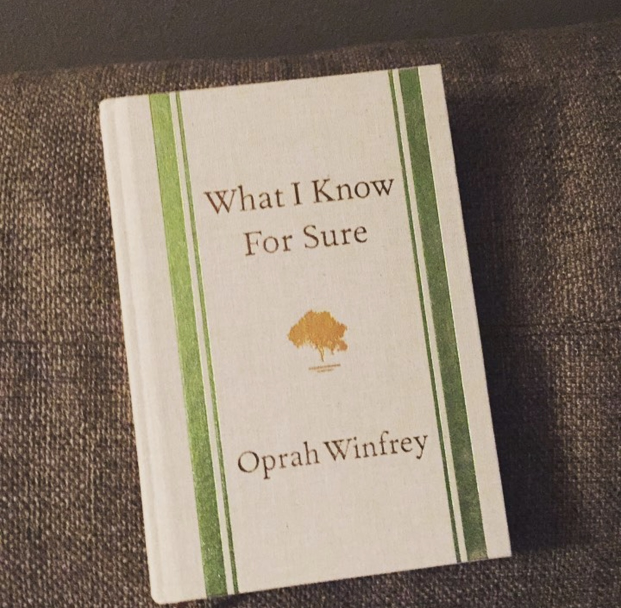 What I know For Sure - By Oprah Winfrey:  I was craving some inspiration from people that have been able to change the world and when Oprah comes up randomly 3 times in 2 days you listen to the universe and  read her book!  Easy read and I mean...it's Oprah, how could you go wrong?