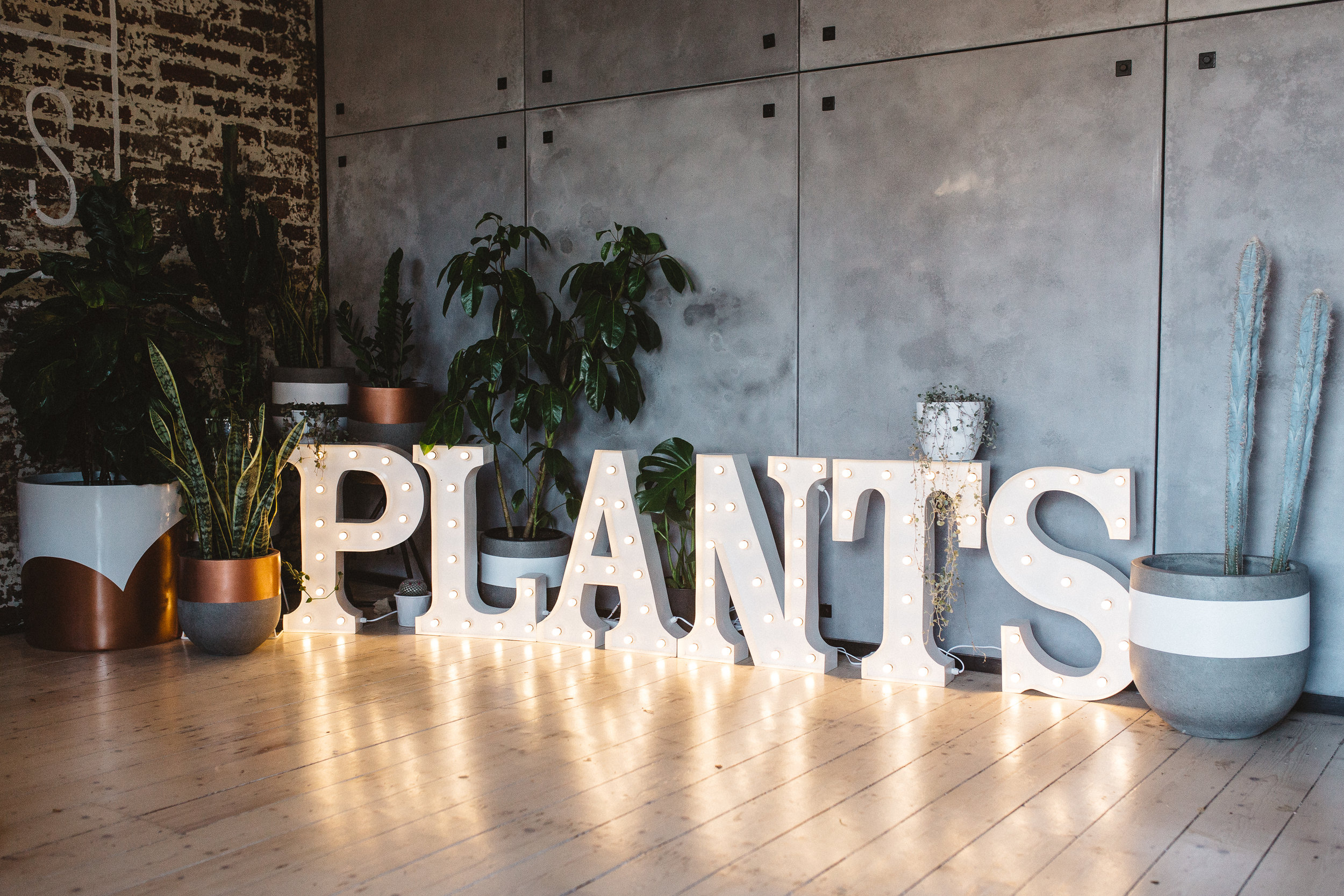 PLANTS - Products, Corporate.jpg