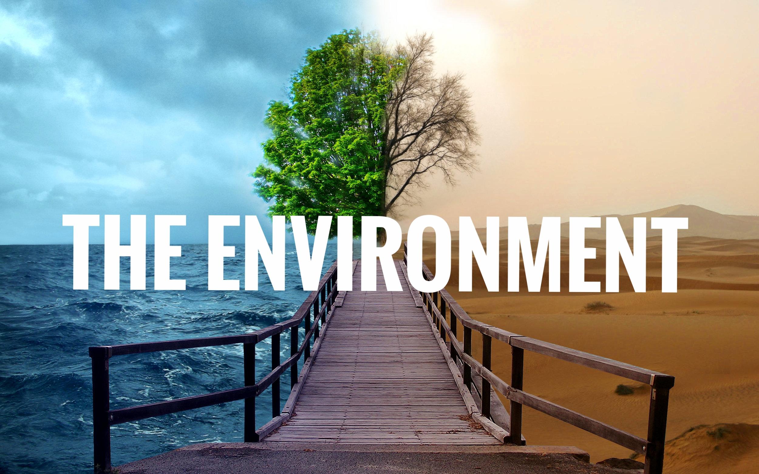 Environment, 13 Dec 17.jpg