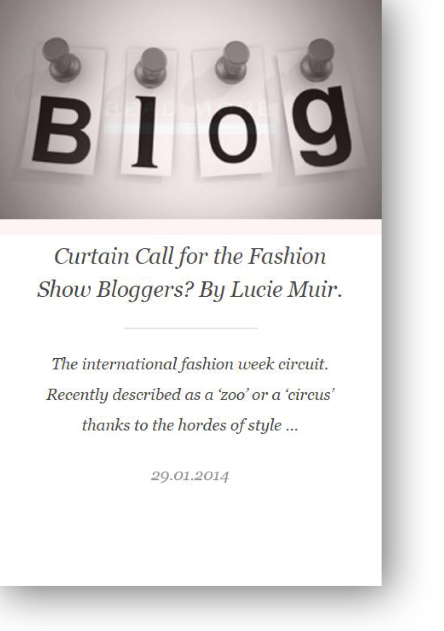 Hudson Walker opinion piece on Fashion Show Bloggers by Lucie Muir