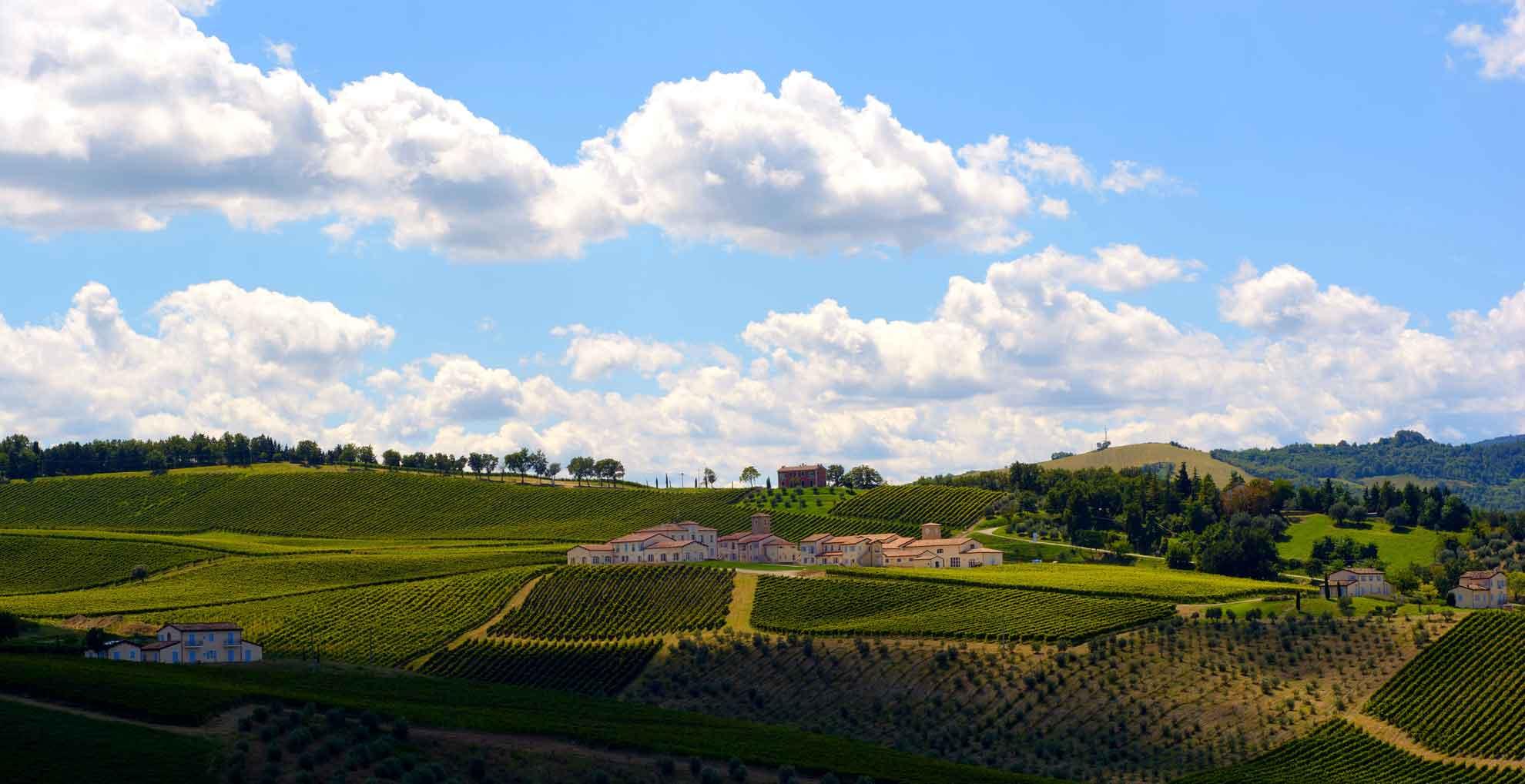 Borgo Condè, Predappio - Vini Sangiovese e Merlot in purezza