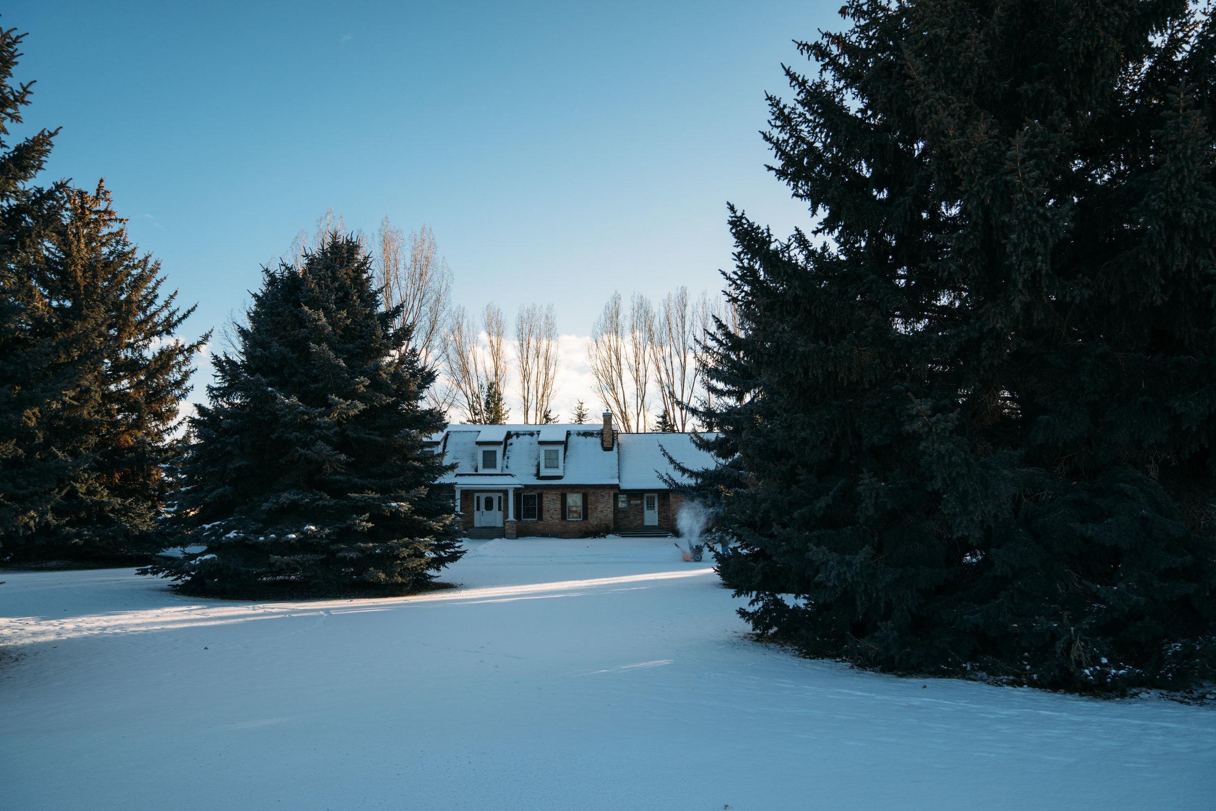 shirley-christmas-36.jpg