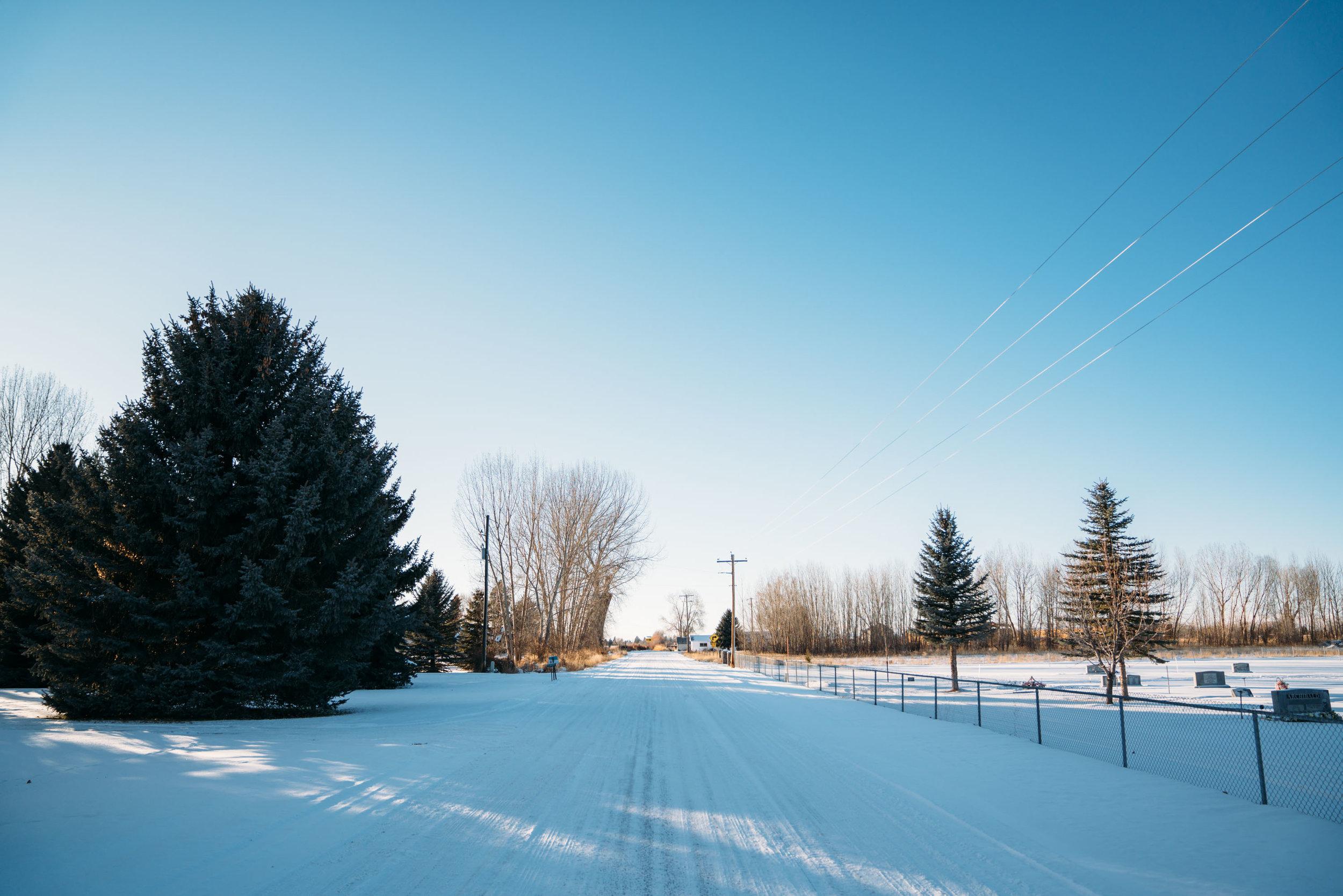 shirley-christmas-43.jpg