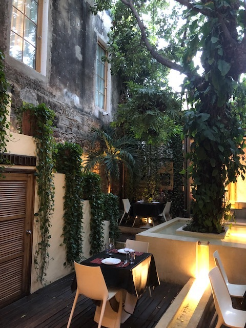 Look at those pothos!!! Loved how lush this open air restaurant was!!