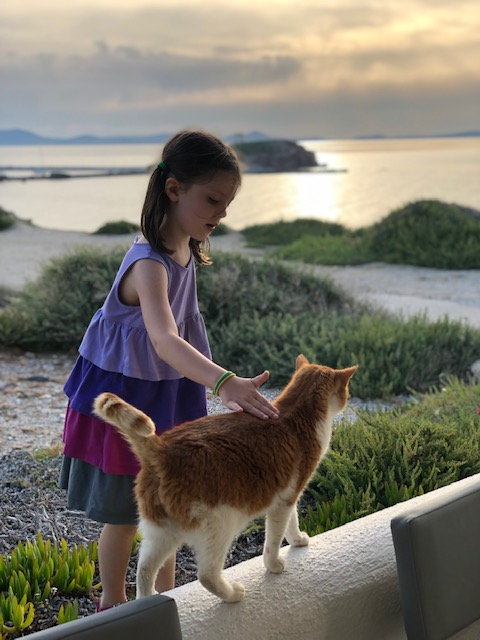 So many cats around Greece - Olivia made good friends with this one at the Hotel Grotta